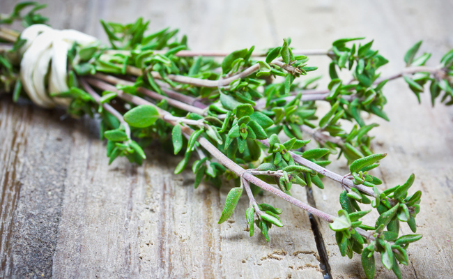 thyme essential oil: benefits, properties, composition and  uses
